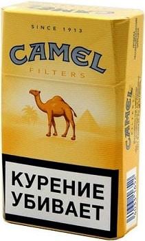 camel filtres